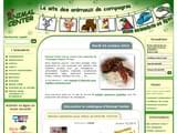 Boutiques en ligne Animaux : Animal center