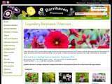Boutiques en ligne Fleurs et plantes : Barnhaven Primroses