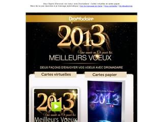 Newsletter voeux 2013